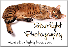 Starrlight Photo