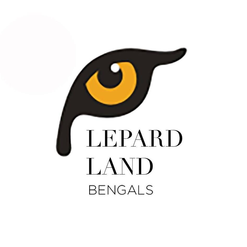 Logo Lepardland Criadero Gato Bengali