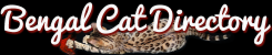 The Bengal Cat Directory – Resource for Bengal Cats, Kittens, and Information