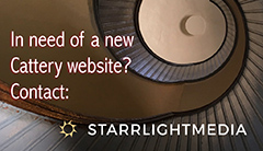 Starrlight Media